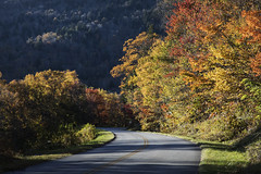 Bend in the roadway along the southern reaches of the Blue Ridge Parkway, near Linville, North Carolina. Original image from Carol M. Highsmith's America, Library of Congress collection. Digitally enhanced by rawpixel.