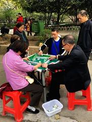 Mahjong in het park (1)