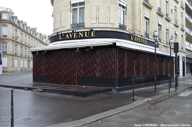 L'Avenue brasserie copie
