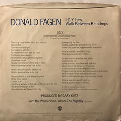DONALD FAGEN:I.G.Y.(JACKET B)