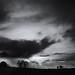 November twilight (B/W)