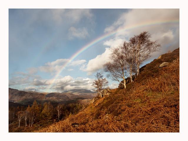 Holme Fell - Cumbria II