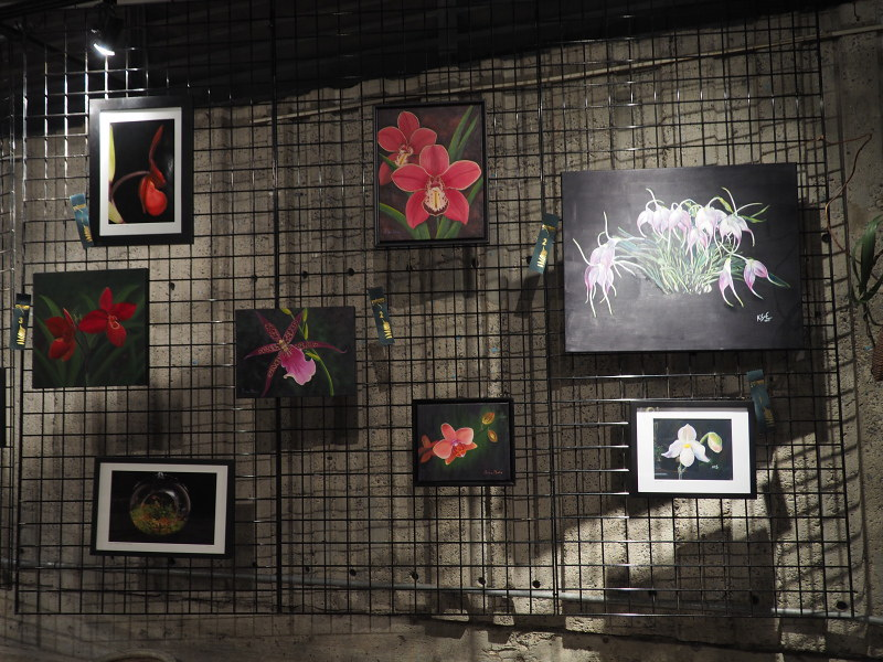 Orchidexpo 2017 - Photos 46619906001_ffab102fef_c