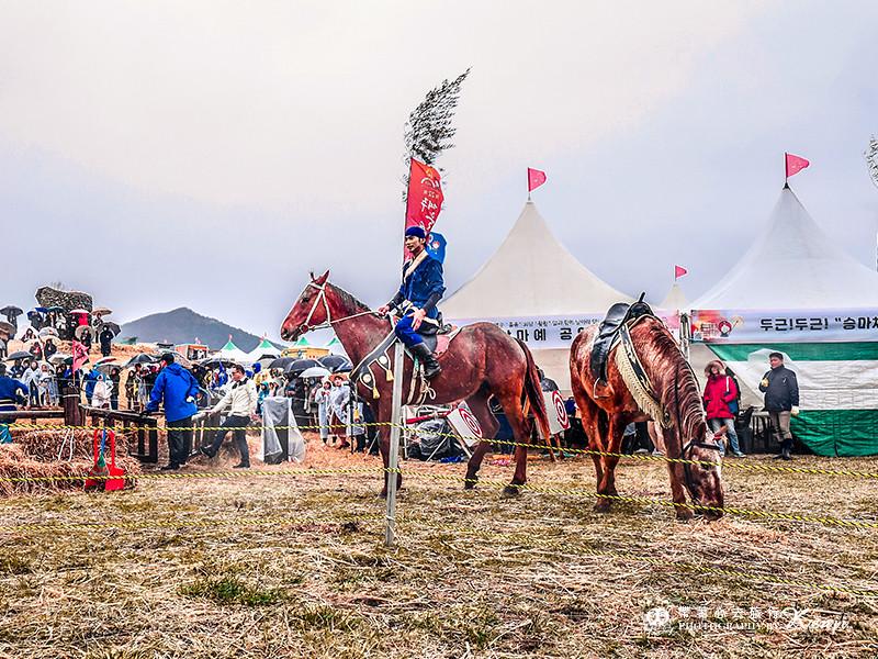 jeju-wildfire-festival-19