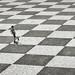 [Schach - Madeira / August 2018] by querformat-fotografie