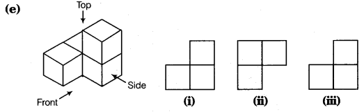NCERT Solutions for Class 8 Maths Chapter 10 Visualising Solid Shapes 9