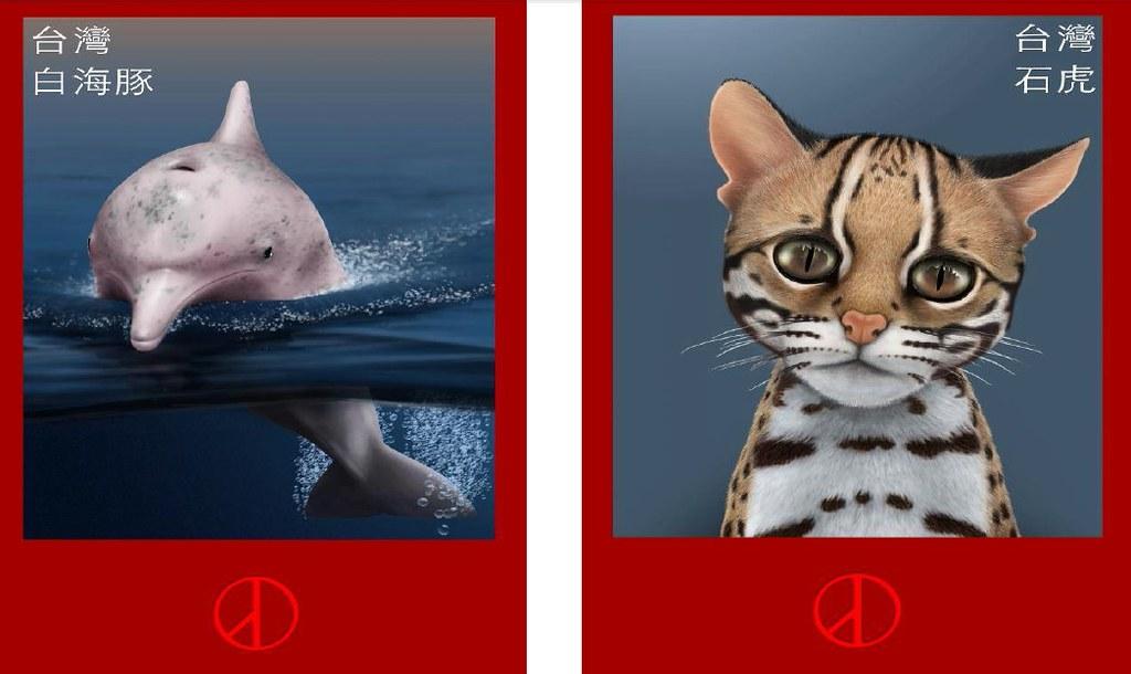 環團與學者共同發起參選人「白海豚、石虎保育運動宣言」連署活動。圖片來源:台灣蠻野心足生態協會