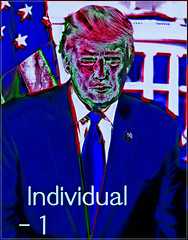 Individual 1.1
