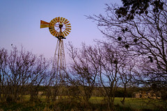 Windmill at Sunset, Canyon Wren Ranch
