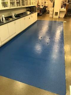 Industrial GraniFlex Quartz- Tailored Concrete Coatings- Manassas, VA