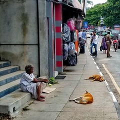 Poverty in the street