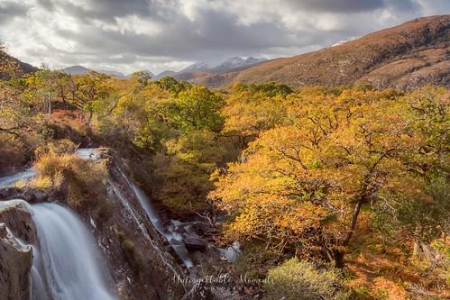 killarneynationalpark sunset autumn travel photography ireland canon80d canon1635mm longexposure