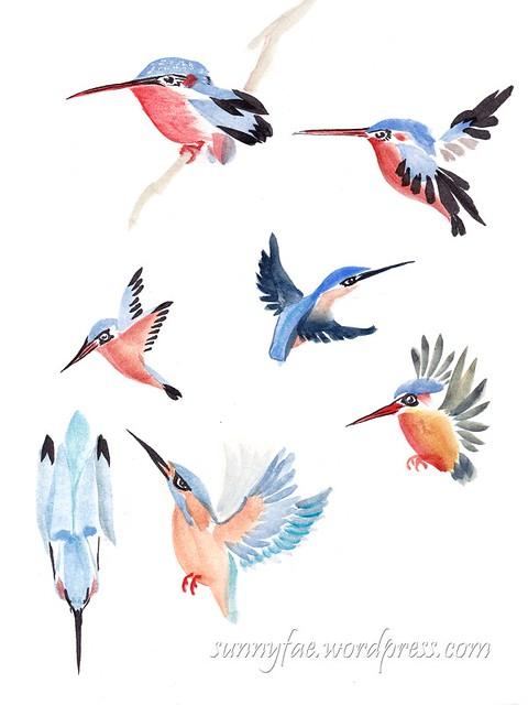 kingfisher's brush strokes