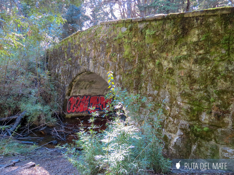 Que ver en Bariloche IMG_6126