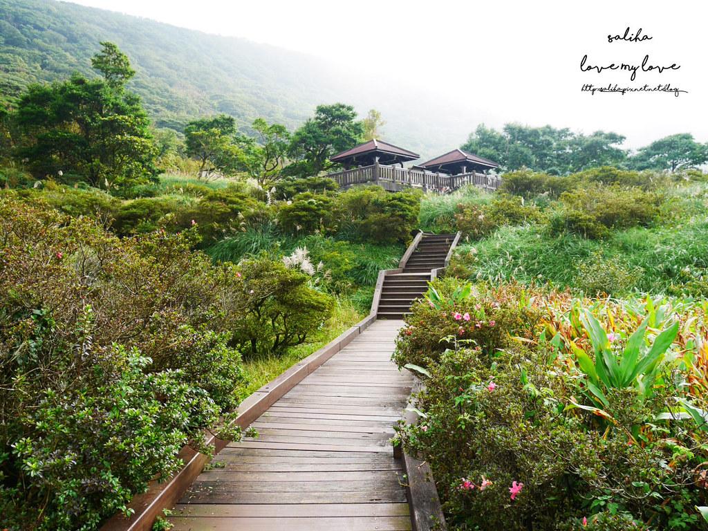 台北一日遊陽明山私房秘境推薦好玩好走親子景點大屯自然公園 (6)