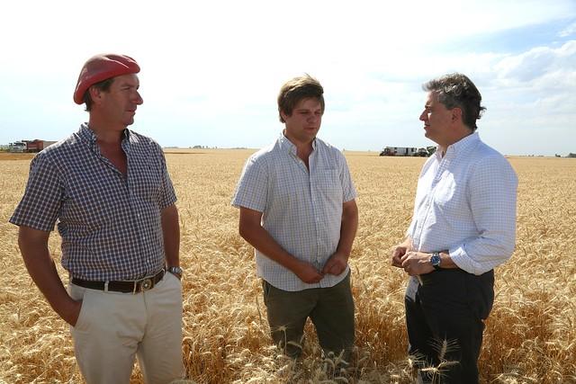 """Etchevehere: """"El trigo empieza a mostrar buenos resultados"""""""