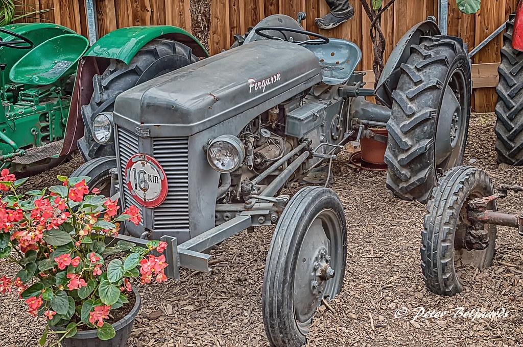 1952 Ferguson tractor - Download Photo - Tomato to - Search