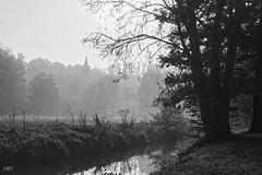 le clocher dans la brume DxOFP LM+35 1000925 - Photo of Tacoignières
