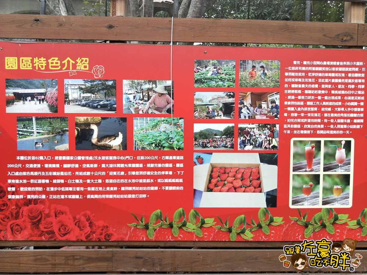 苗栗縣大湖灣潭玫瑰草莓園-16