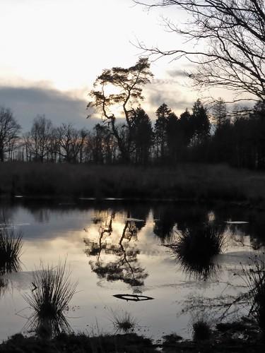 Wetland of Ketliker Skar