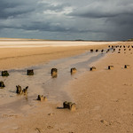 21. September 2018 - 12:58 - Now the weather's really turned cold, cast your mind back to September - this is Brancaster Beach, in North Norfolk where we experienced Storm Bronagh.  We were alternately pelted with horizontal rain, then vast clouds of stinging sand.  Apparently these groynes, or breakwaters or whatever they are have now vanished under the sand.  Scolt Island, which I wanted to walk out to see and the wrecks are almost visible in the distance.  It is possible to walk to the wrecks, but it's not really safe for old fogies like us, as when the tide turns, it gallops in faster than you could walk!