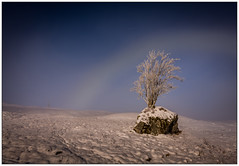 Rannoch Moor Fogbow