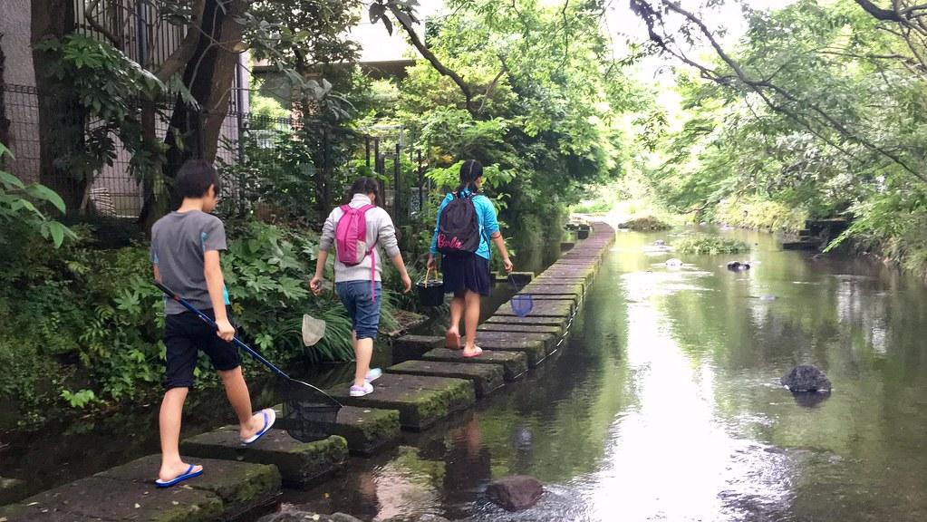 生活在流域,向河川學習,「流域學校」期望營造良好、永續的人水共生關係,實現河川的美夢。拍攝:張琬珮