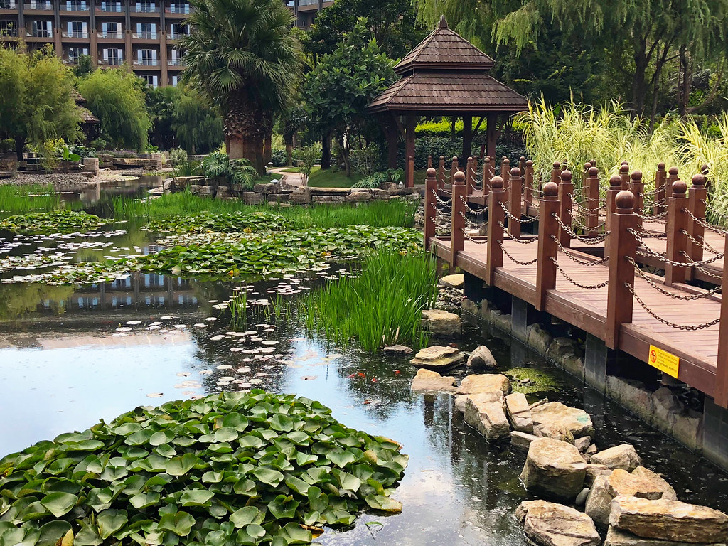 Experiencing the Best of Yunnan With the InterContinental Kunming in China