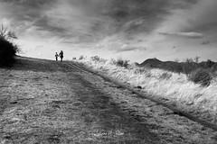 Balade en terre volcanique - Photo of Corent