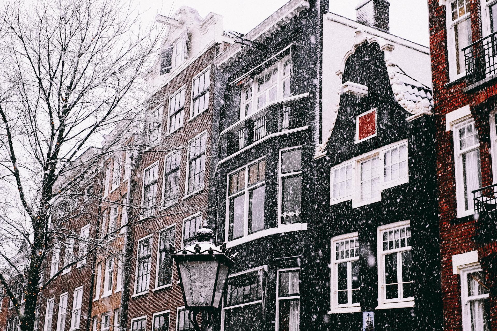 Amsterdam, Snow