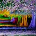 Tring Festival of Light - Van Gogh version