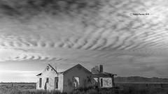 Abandoned House 8065