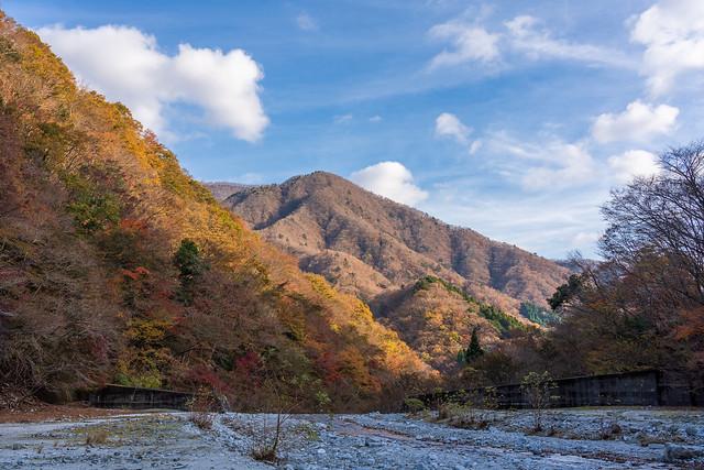 開けた河原と紅葉の山肌