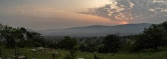 1901-Rwanda-463-Panorama