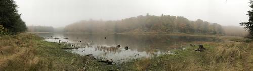 Gatineau - misty on the pond