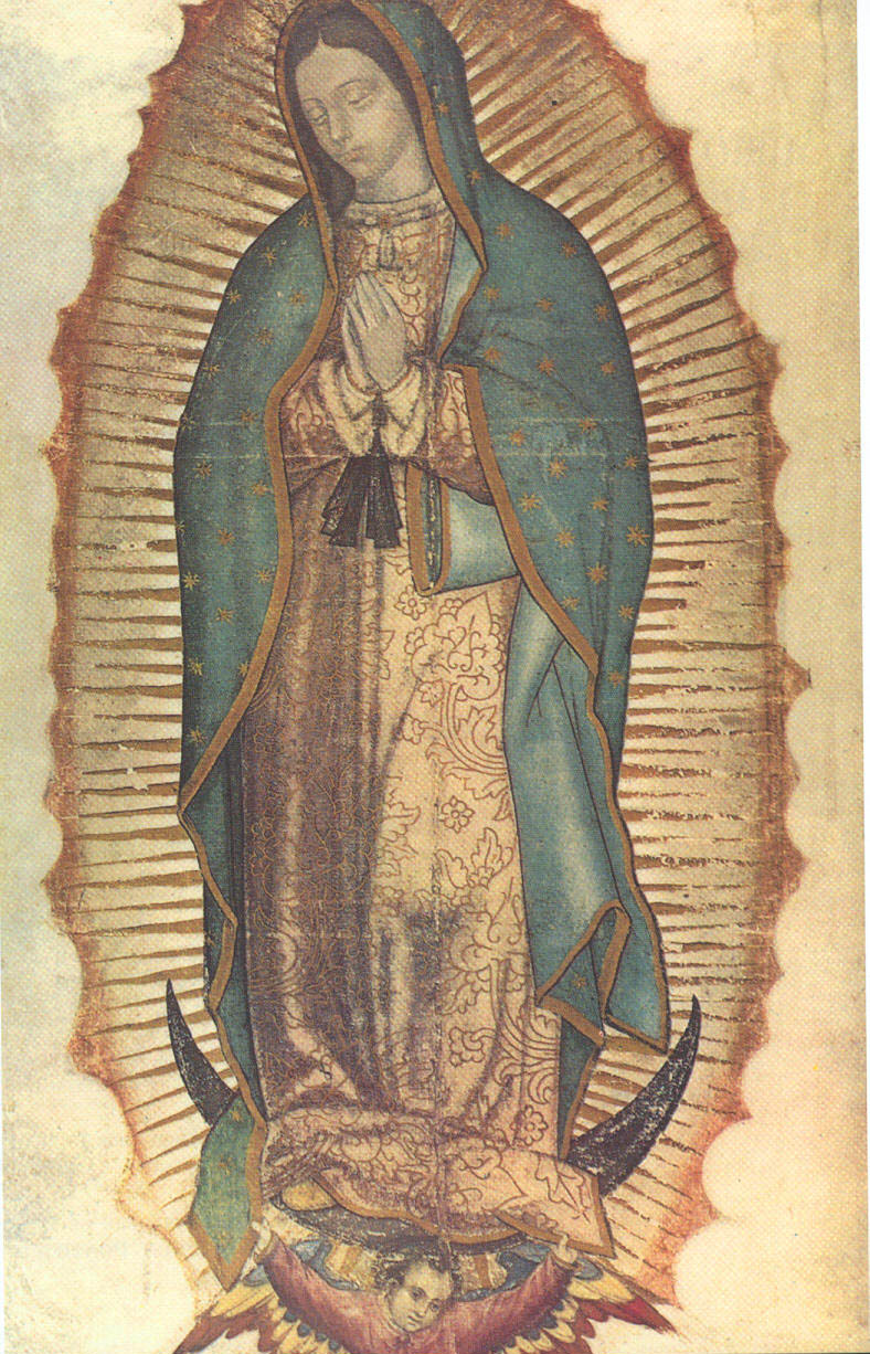 Our Lady of Guadalupe (Nuestra Señora de Guadalupe), also known as the Virgin of Guadalupe (Virgen de Guadalupe), is a Catholic title of the Blessed Virgin Mary associated with a Marian apparition and a venerated image enshrined within the Minor Basilica of Our Lady of Guadalupe in México City. The basilica is the most visited Catholic pilgrimage site in the world, and the world's third most-visited sacred site. Pope Leo XIII granted the venerated image a Canonical Coronation on October 12, 1895.