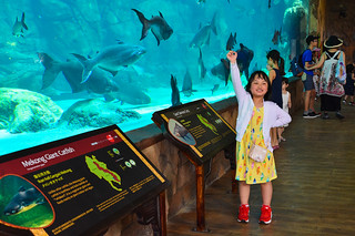 Singapore-zoo-(18)
