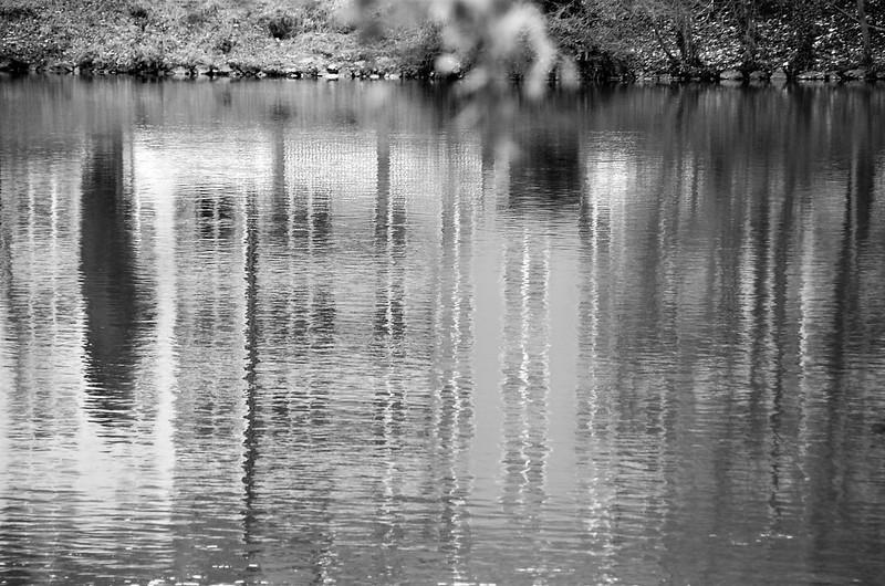 River Aare 01.01 (1)