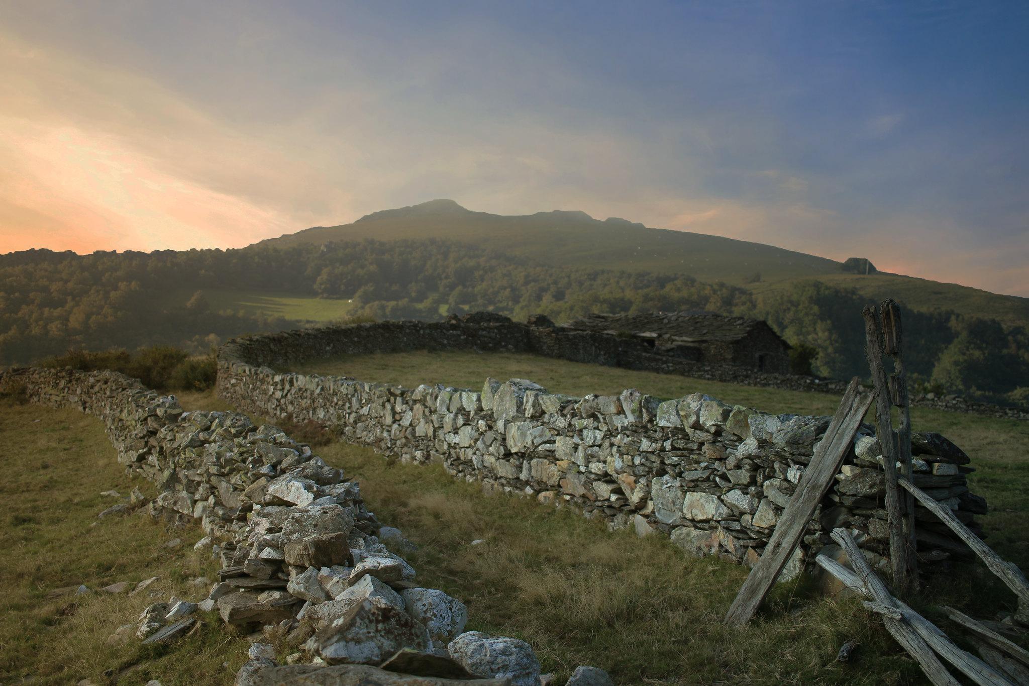 Life in the Moors II