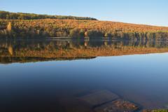 Le Plan d'eau de Wolfartshoffen en automne - Photo of Zinswiller