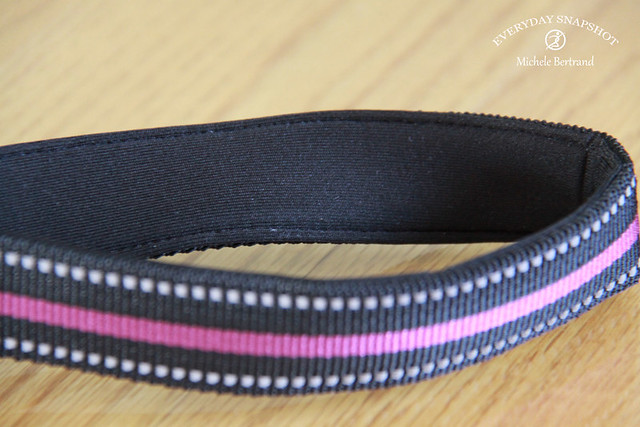 Leash - 02 Padded
