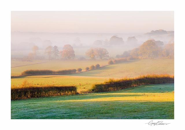 Autumn Mists II