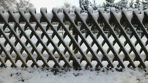 Ornated fence - the first snow
