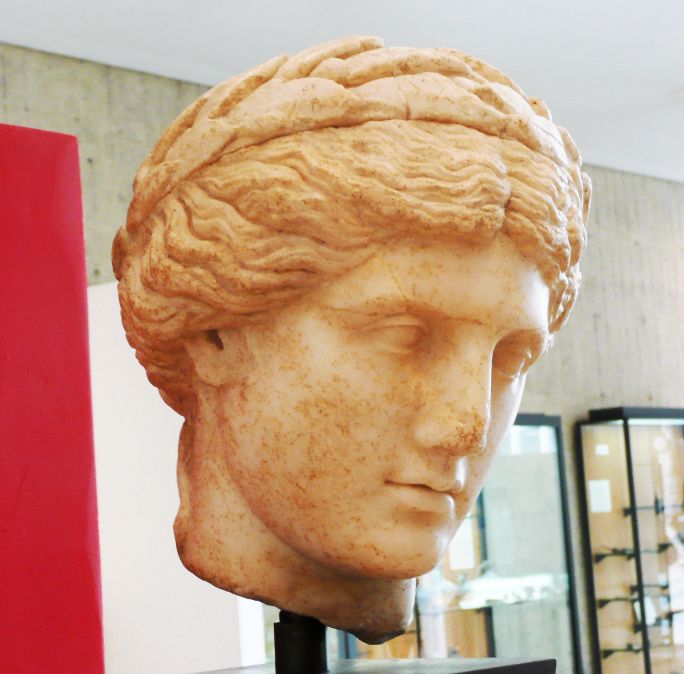 A replica bust of Apollo wearing a laurel wreath.