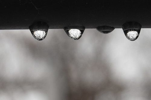 35/365: Ice Droplets