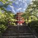 Chūrei-tō Pagoda - Fujiyoshida (Japan) by Andrea Moscato