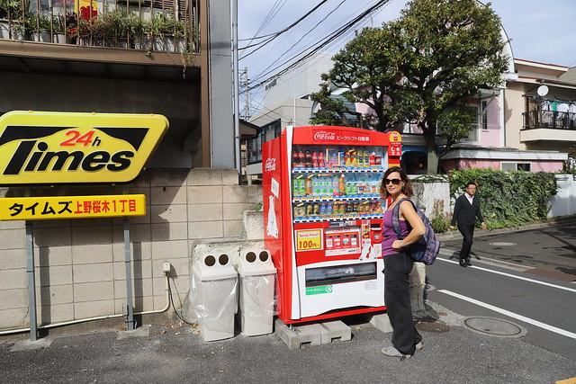 Улиткины в Японии в поисках момидзи. Осень - 2018