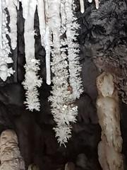 Grotte de Clamouse_155242 - Photo of Saint-Bauzille-de-la-Sylve