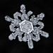 Snowflake-a-Day No. 8 by Don Komarechka