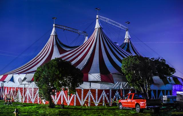 circus bella kaleidoscope winter circus